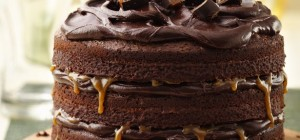 10 Favorite Chocolate Cake Recipes