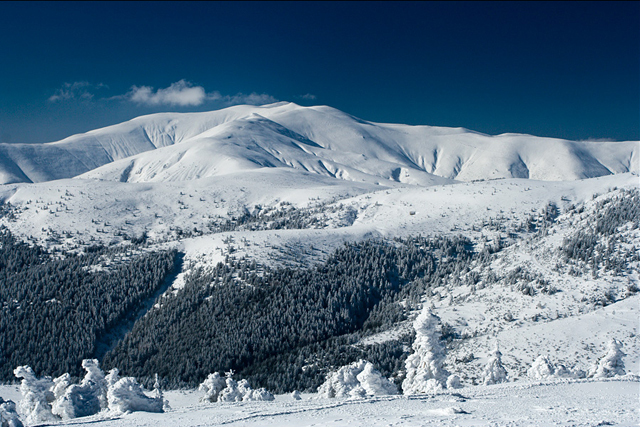 Don't Miss the Natural Beauty of Osogovo Mountain, Macedonia