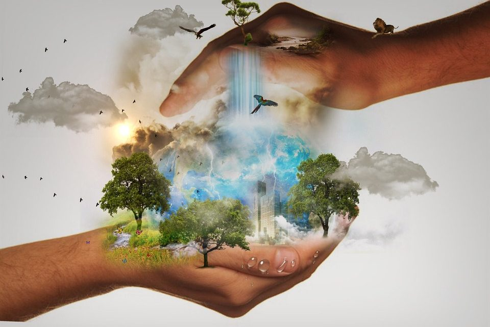 Humans Consume More Natural Resources Than Earth Can Produce It