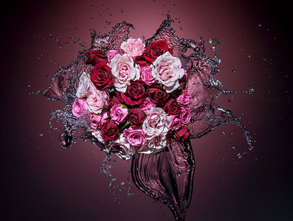 splashing roses