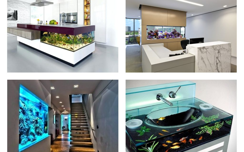 Lovely Aquarium Ideas to Enhance the Beauty of Home