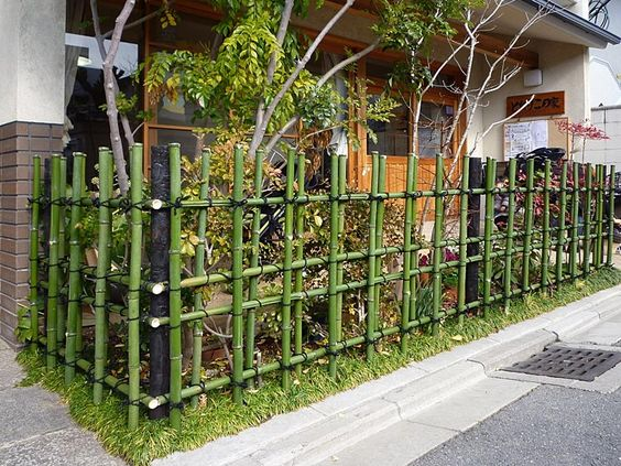 bamboo fence idea