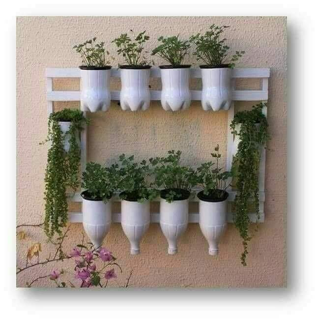 bottles vertical garden