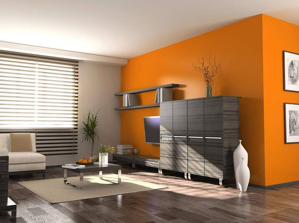elegant orange walls in living room