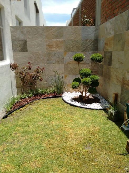 backyard corner
