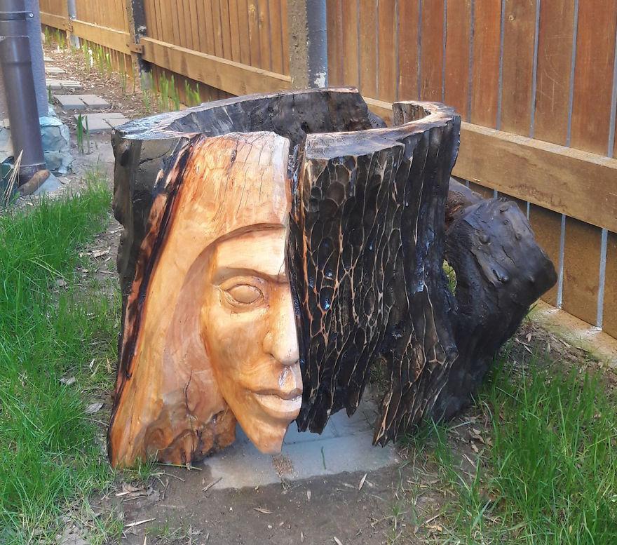 tree stumps art