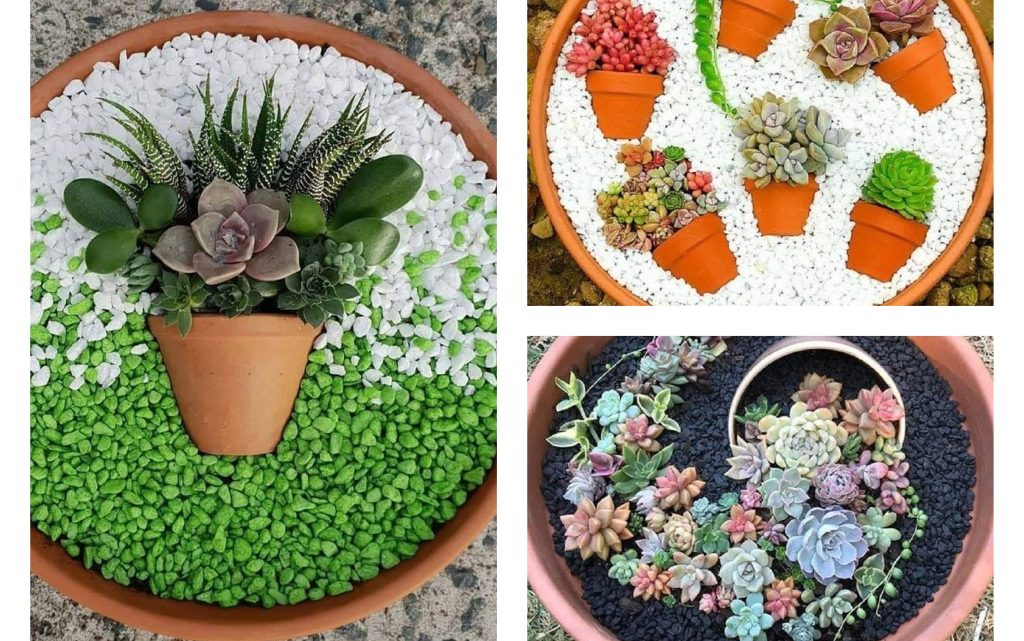DIY Gardening inside the Terra Cotta Pots