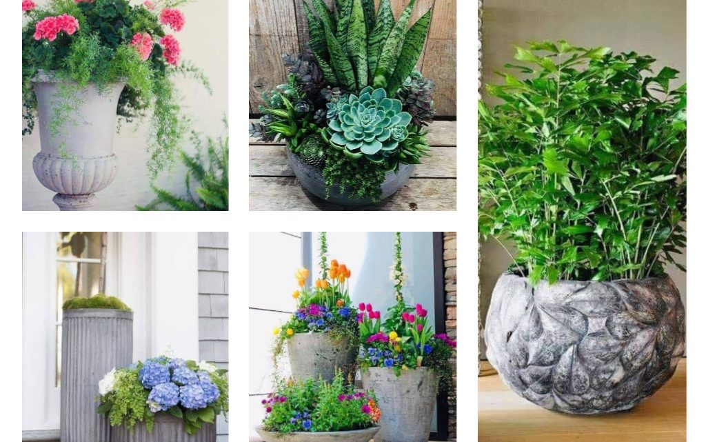 Modern Large Flower Pots
