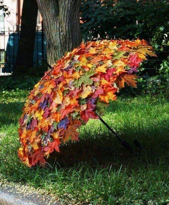 umbrella made of leafs