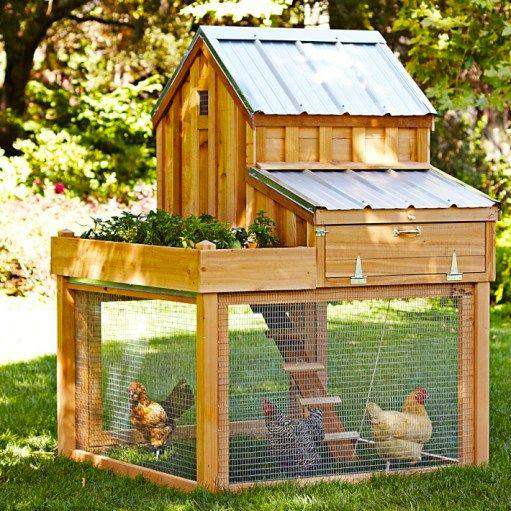 hens house made from pallets