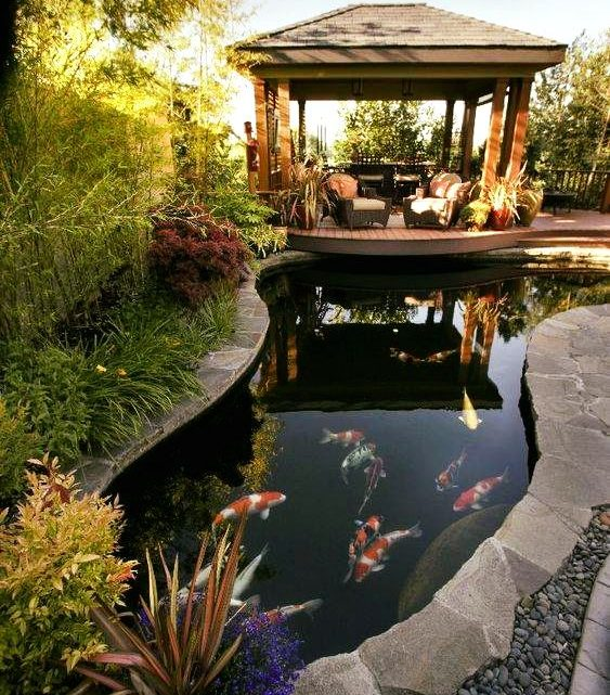 Great Ideas About Having Fish Pond in Yard