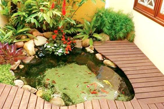 wooden pond
