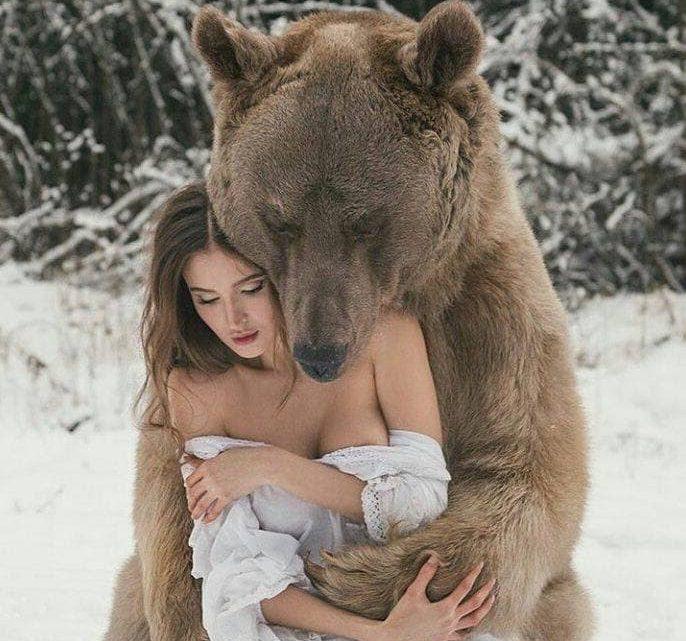 Meet Stepan the bear and his Friends