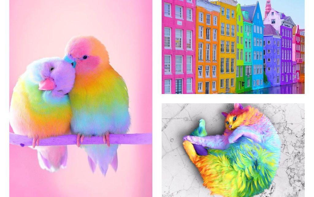 Mindblowing Artworks/Rainbow by Ramzy Masri