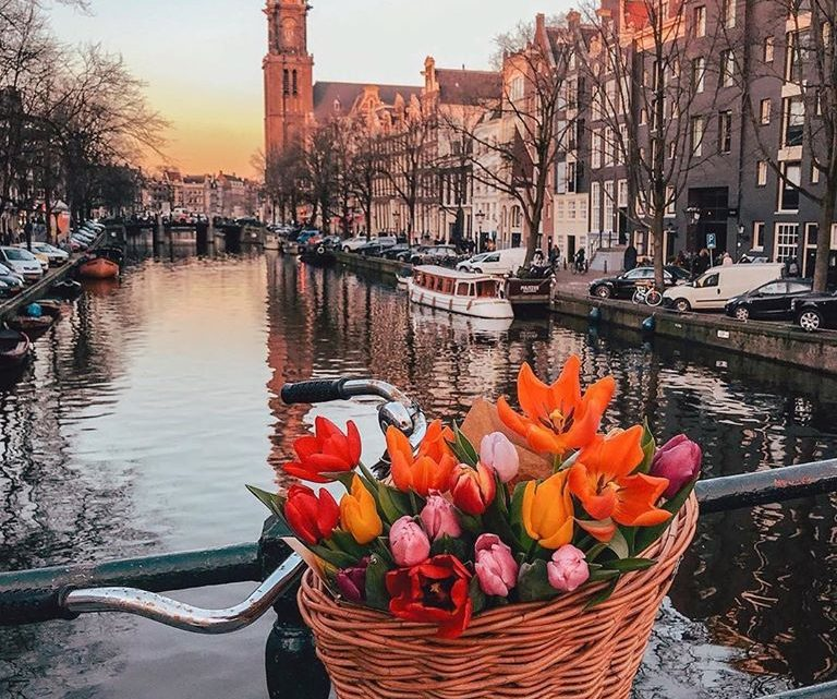 Springtime in Amsterdam, Travel Inspiration