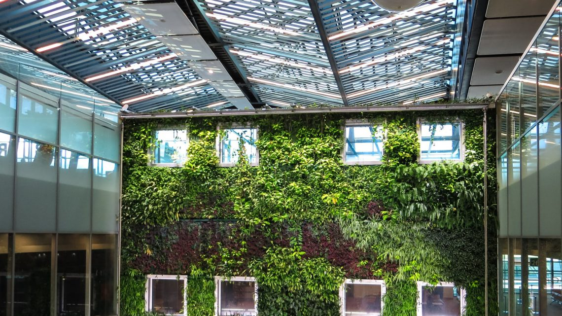 5 Benefits of Having Indoor Plant Wall in the Office