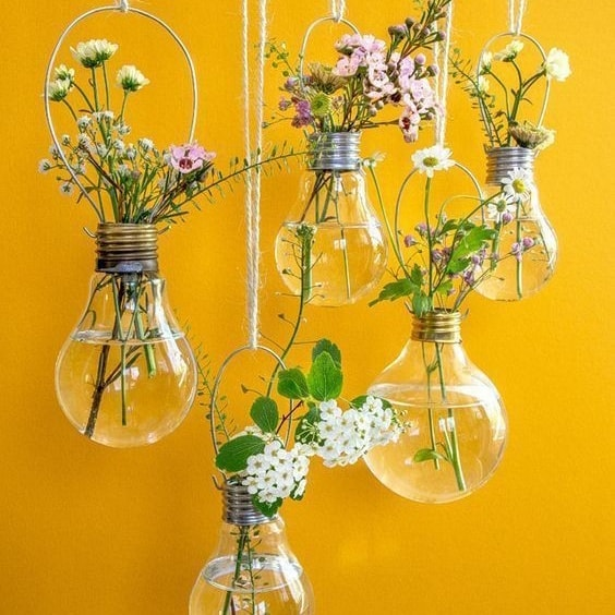 Absolutely Great Bulb Reuses