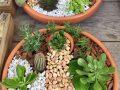The Cutest Fairy Mini Garden Ideas